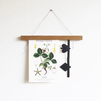 Posterhängare i ek