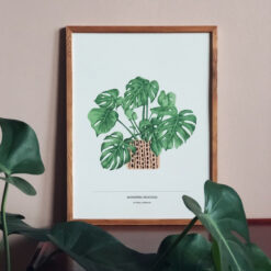 Poster Monstera av Frida Clerhage